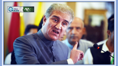 The Foreign Minister Shah Mehmood Qureshi Made a Conditional Offer of Amnesty to the TTP